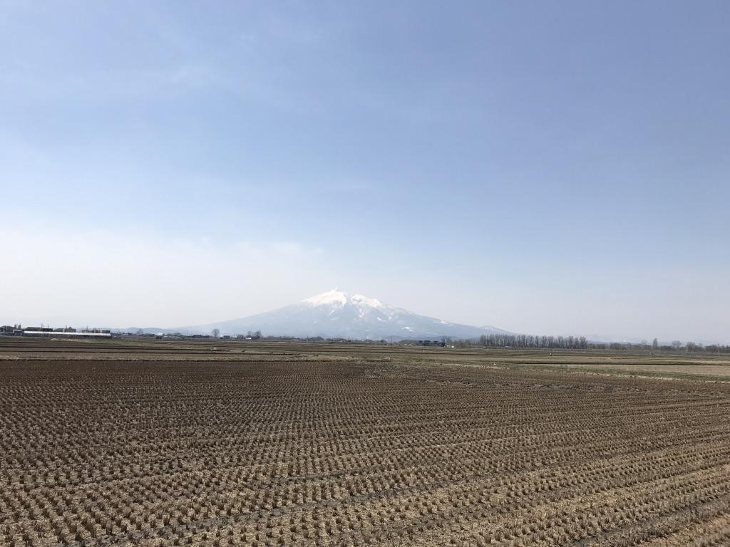 岩木山と田んぼ